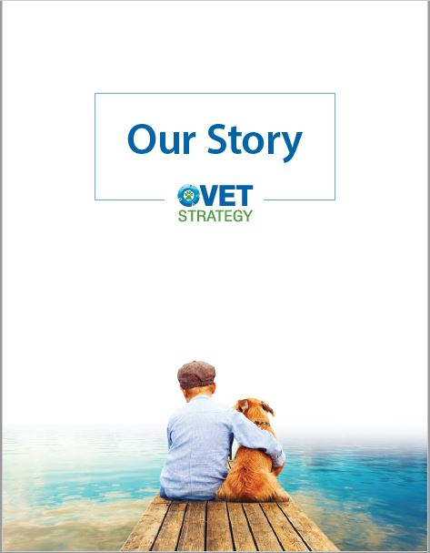 VetStrategy - Our Story PDF