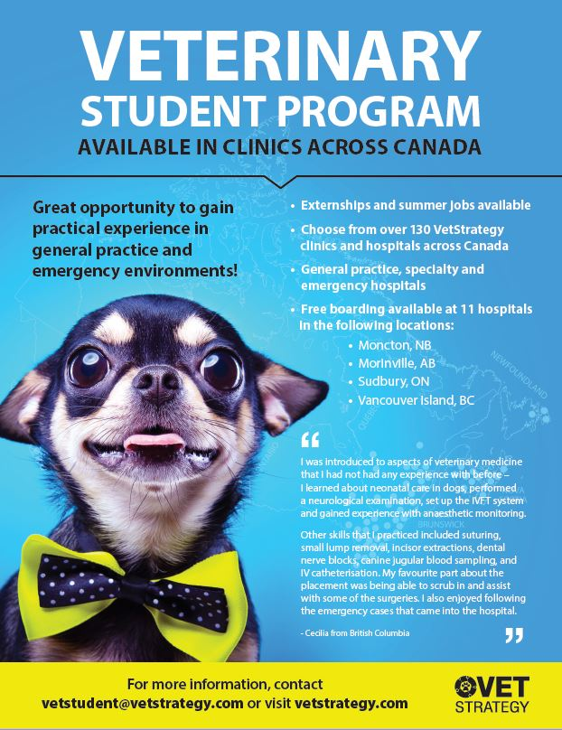 VetStrategy Veterinary Student Program Flyer PDF